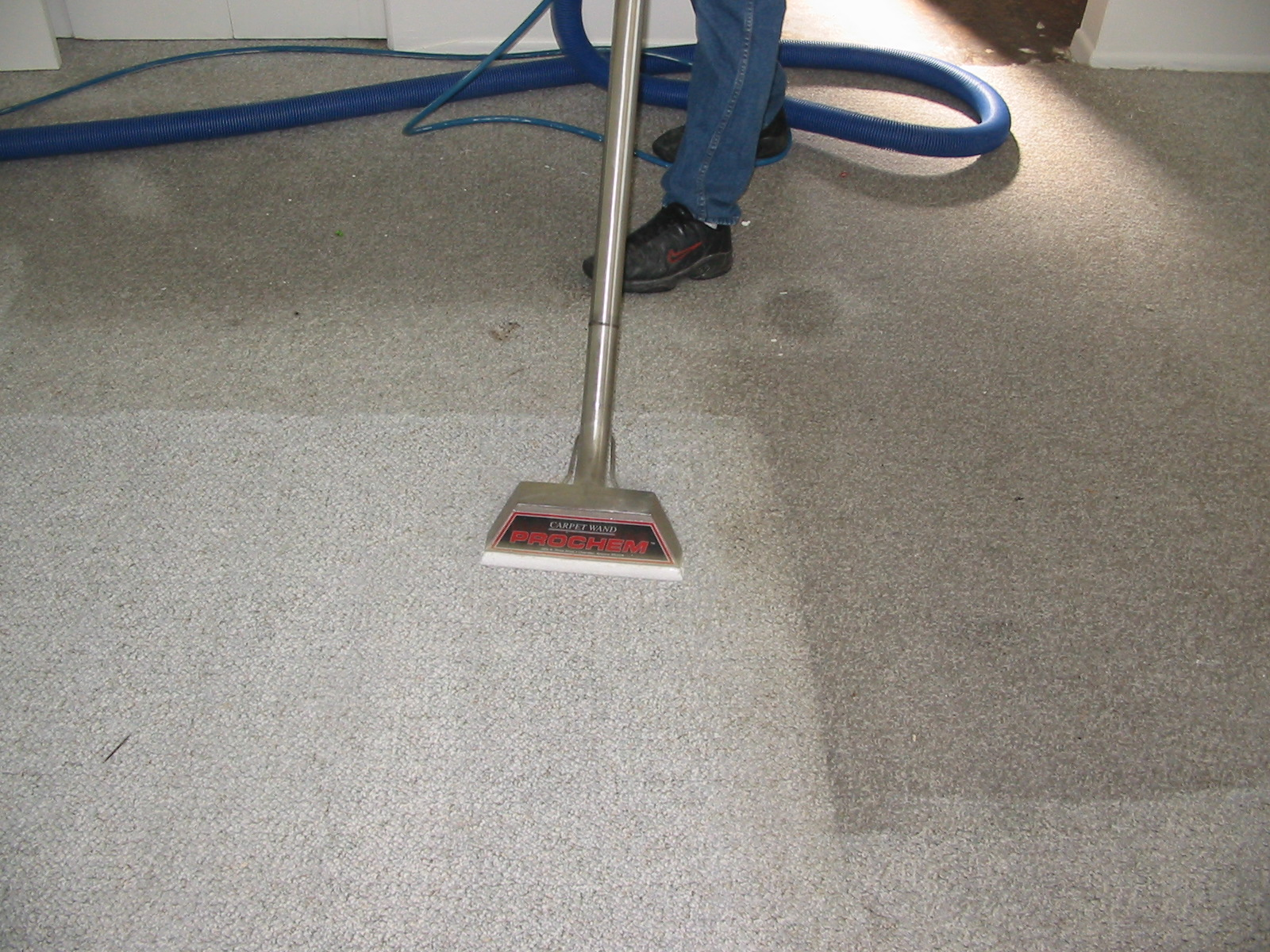Why You Need Professional Carpet Cleaning Services
