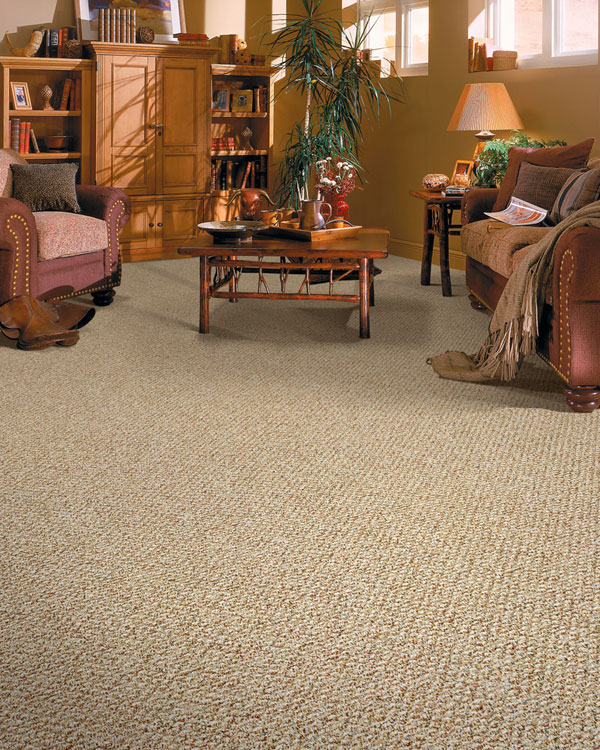 Factors to assess before buying carpets super choice for How often should you replace carpet
