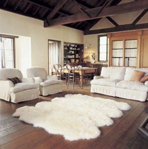 area-rugs2