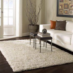 area-rugs3